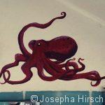 Oktopus im Bad